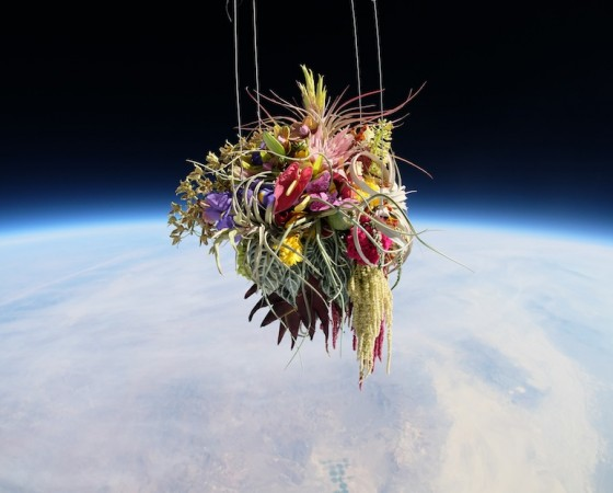 Makoto Azuma, space, flowers in space, sculpture